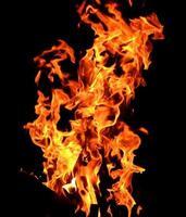 feu de camp dans la nuit