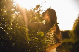 Brunette woman picking apple du haut de l'arbre