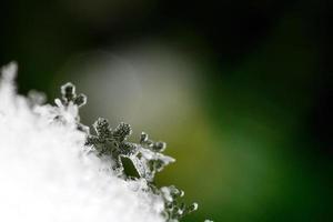 magnifique macro de cristal de neige photo