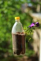 pot de fleur bouteille en plastique au soleil