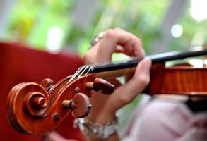 2015_05_violinistin