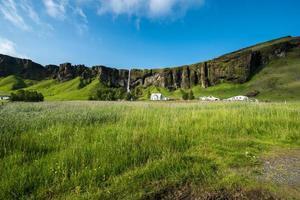campagne islandaise photo
