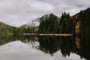arbres verts près d'un plan d'eau sous un ciel nuageux