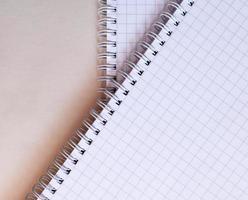deux cahiers en papier millimétré avec des spirales