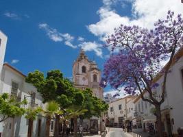 belle journée ensoleillée à logos portugal photo