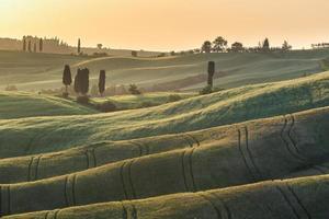 coucher de soleil sur les champs d'été en toscane