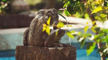 Sculpture fontaine grenouille à la piscine à Florence, Italie photo