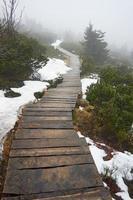 pont en bois sur un sentier de montagne dans le brouillard