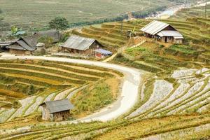 rizières en terrasses dans le village de tavan sapa. photo