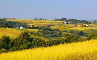 champs ondulés et village