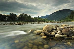rivière de montagne dunajec dans le paysage boisé