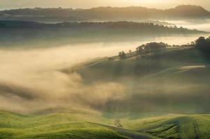Champs toscans enveloppés dans la brume, Italie