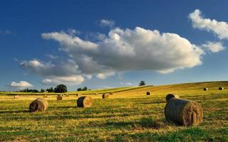 balles de foin sur le terrain après la récolte, Hongrie