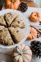 biscuits cuits au four sur plaque en céramique blanche photo