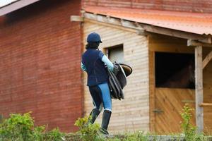 cavalier avec harnais photo