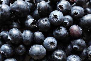 Macrophotographie de bleuets pour fond de nourriture photo