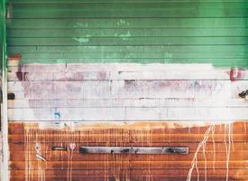 porte de garage avec peinture marron et verte photo