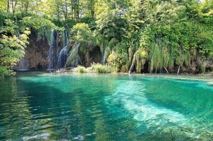lacs de plitvice en croatie photo