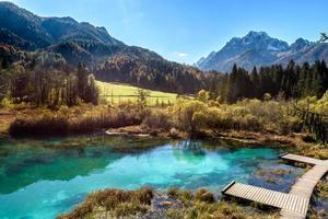 lac de zelenci en slovénie.