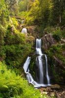 cascades de Triberg photo