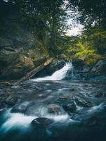 photographie time lapse de cascade