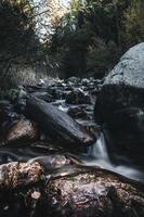 ruisseau avec du bois et des pierres