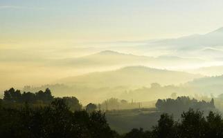 photographie aérienne d'arbres brumeux avec des montagnes