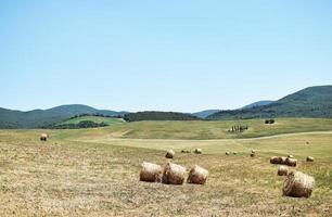 Barils de foin sur champ d'herbe verte pendant la journée