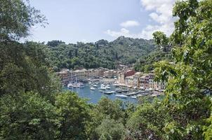baie de portofino depuis une terrasse photo