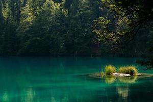 lac de montagne avec une petite île photo