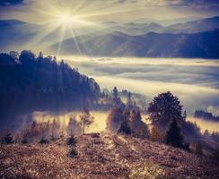 matin d'automne brumeux dans les montagnes.