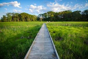 sentier pédestre des marais