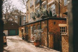 Londres, Angleterre, 2020 - maison en brique avec des plantes placées à l'extérieur photo