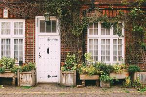Londres, Angleterre, 2020 - plantes assorties devant une maison photo