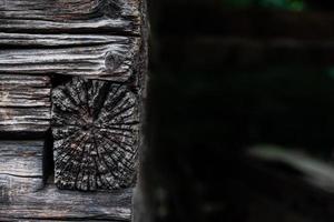 gros plan, de, ossature bois photo