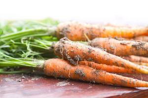 carottes fraîchement cueillies