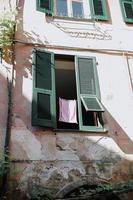 fenêtre en bois vert