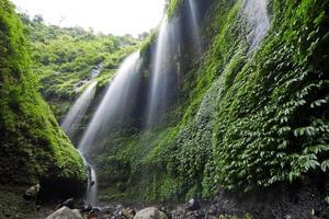 cascade de madakaripura. photo