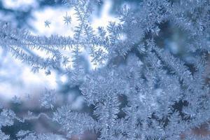 beauté dans la glace photo