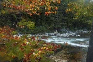 Vue horizontale de la rivière Swift à Rocky Gorge, New Hampshire.