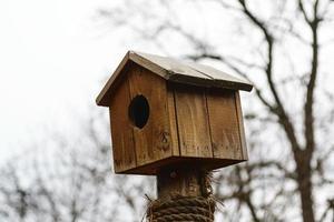 nid d'oiseau en bois