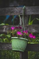 fleurs roses dans un panier suspendu