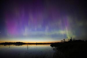 beauté des aurores boréales dans les zones humides photo