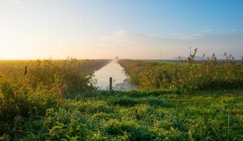 canal à travers un paysage brumeux au lever du soleil