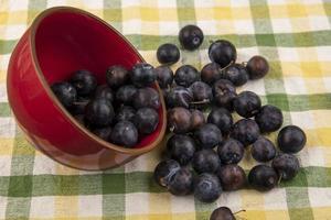 fruits noirs dans un bol rouge sur une nappe à carreaux