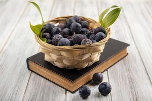Vue de dessus des petits prunelles bleu-noir sauvages amères