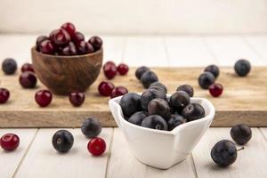 Vue latérale des petits prunelles aux fruits bleu-noir aigre