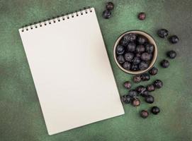 Vue de dessus de petits prunelles de fruits bleu-noir aigre et bloc-notes