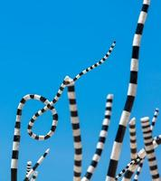 Bondi Beach, Australie, 2020 - sculpture à rayures pendant la journée