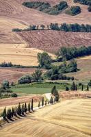 Vue sur une campagne vallonnée en Italie